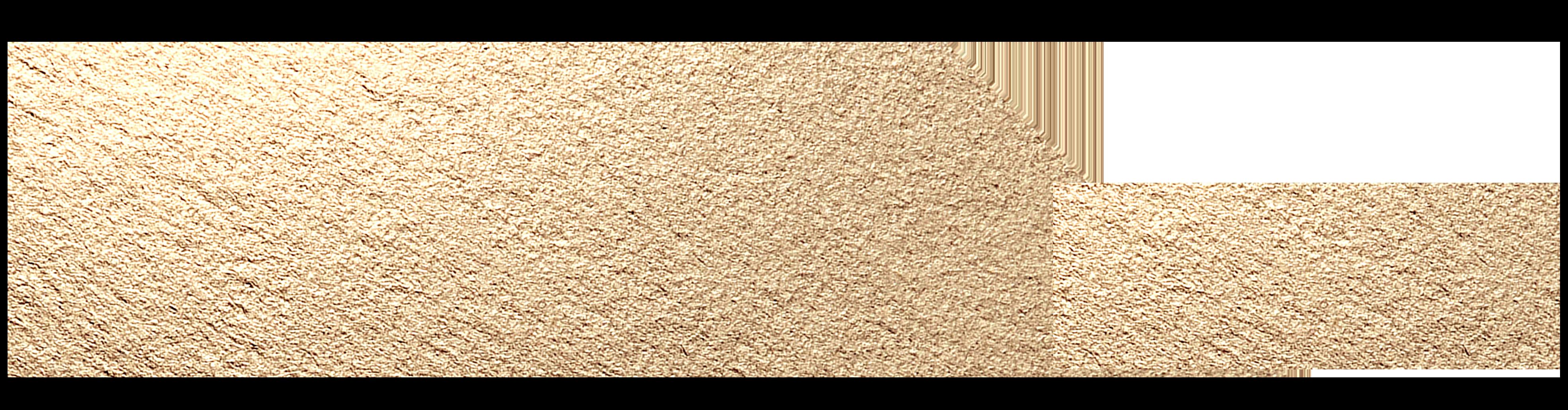 MIC logo Gold Texture RGB 72dpi